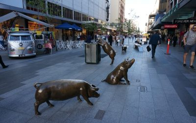 Adelaide | What To See and Do in Adelaide