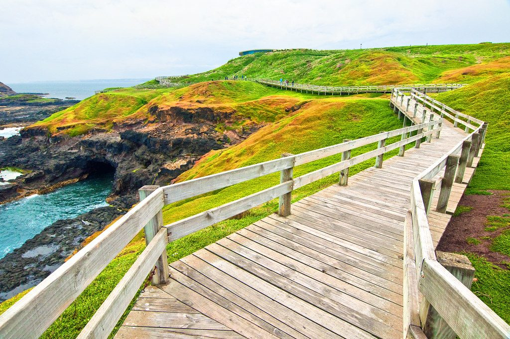 The Nobbies Boardwalk at Phillip Island is a timber path leading to a rocky outcrop on Phillip Island.