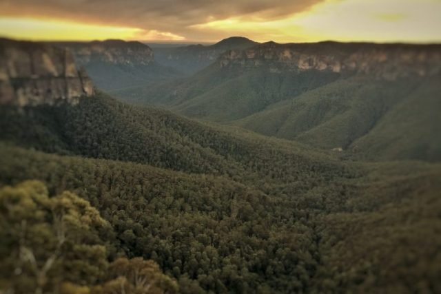 The Blue Mountains Is A Bush National Park Often With A Blue Glow From The Gum Trees.