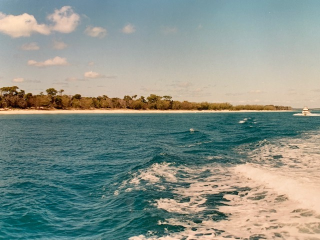 Looking out from a boat in Hervey Bay over to Fraser Island.