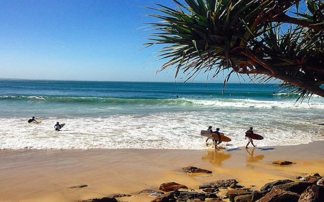 Noosa National Park Is Behind The Beautiful Noosa Beach On The Sunshine Coast In Queensland. Go For A Walk And Don't Forget Your Swimmers For A Dip In The Ocean When You Are Done Hiking.