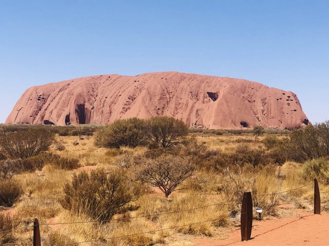 Ayers Rock Or Uluru Has Many Colours Depending On The Light. Today Looking Orangy Brown With A Blue Sky And Scrub Surrounding Its Base.