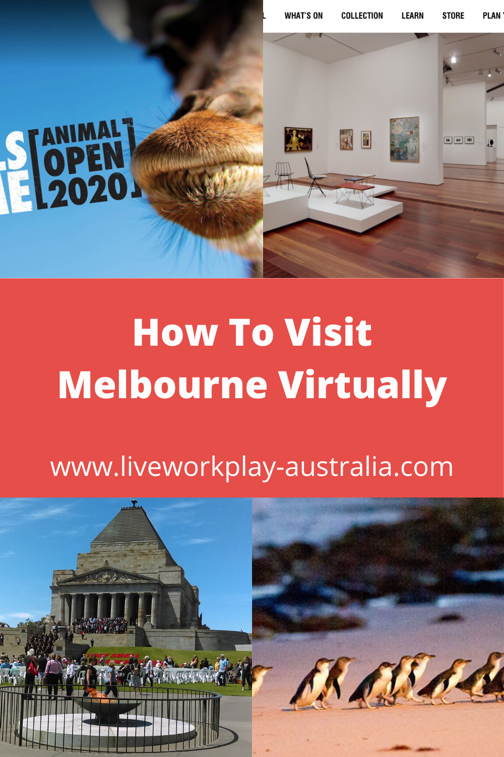 How to visit Melbourne Virtually showing virtual tours