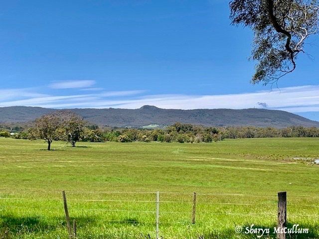 Mount Macedon With Camels Hump Protruding.