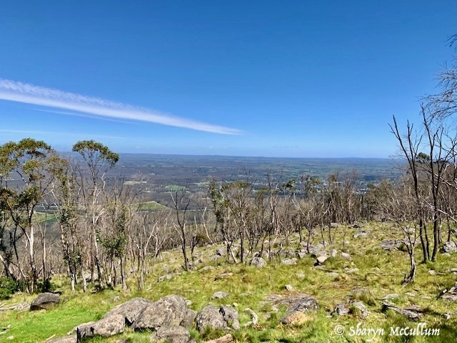 View From Major Mitchell Lookout On Mount Macedon Overlooks The Victorian Countryside With Woodend Township In The Distance.