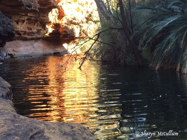 Garden Of Eden Is A Luscious Pond With Rocks And Native Plants At The Bottom Of Kings Canyon.