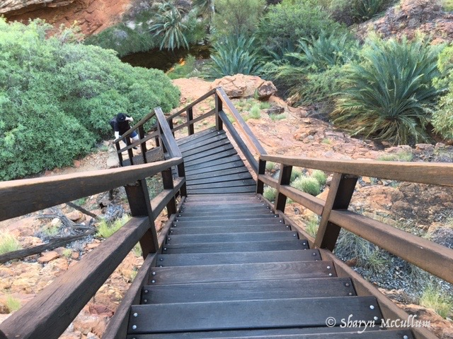 Lots Of Stairs To Ascend Kings Canyon Rim Into The Garden Of Eden.